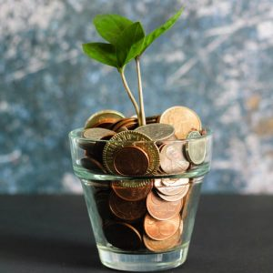 Green plant growing out of a glass cup filled with coins